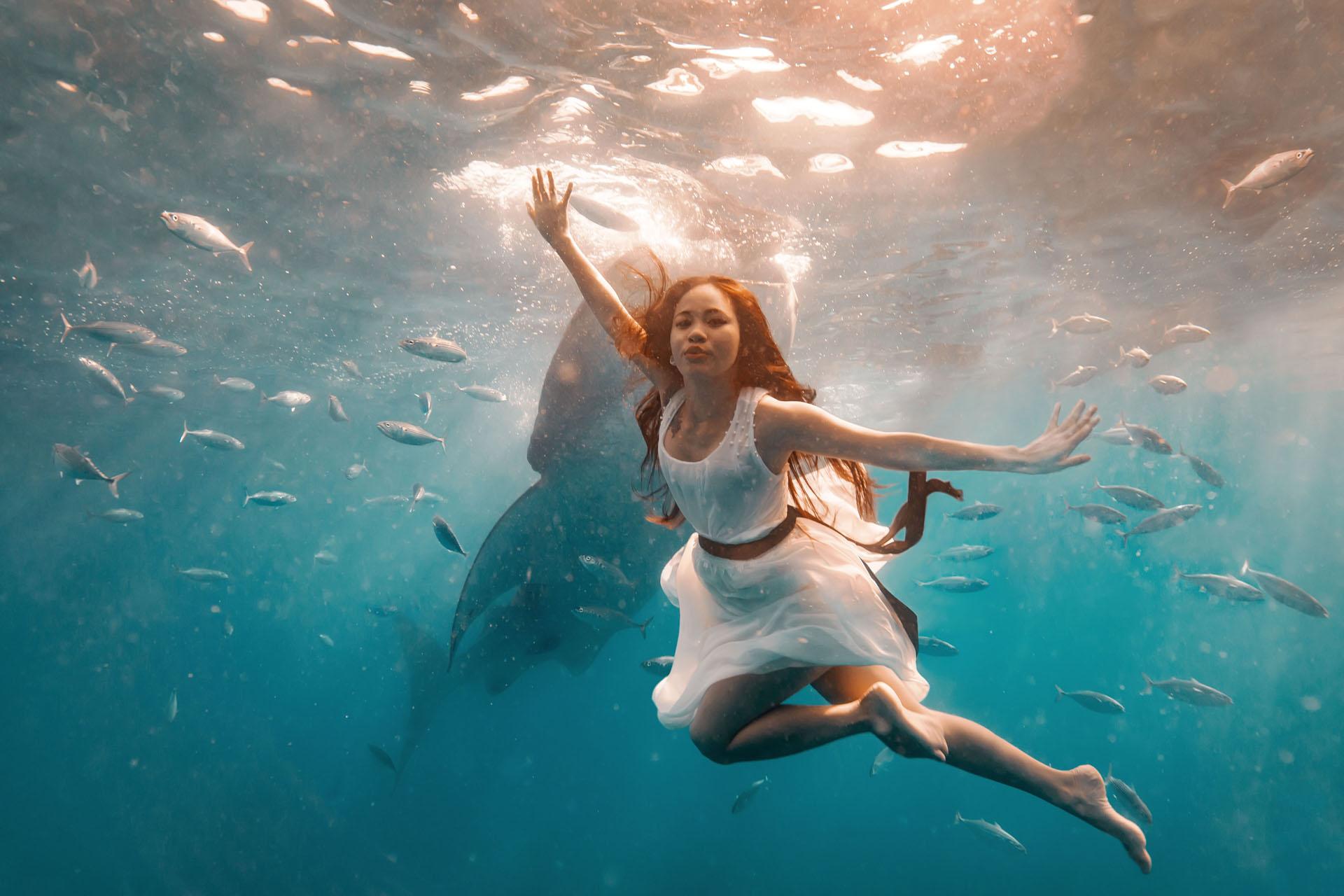 David moore australian photographer